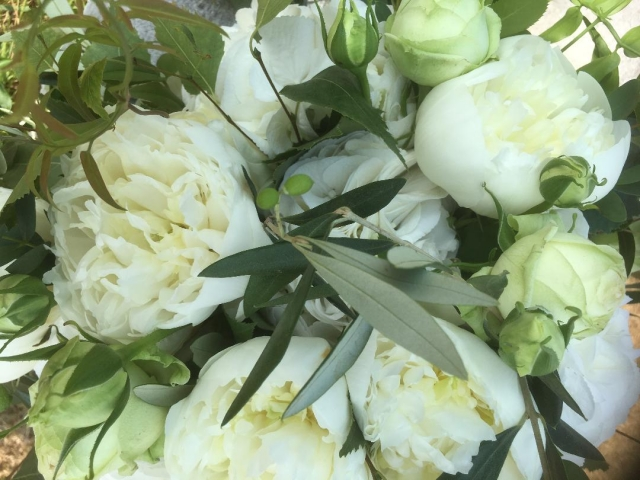 White peony, white hydrangea, jasmine, eucalyptus, bridal bouquet, bridal flowers, new forest Dorset