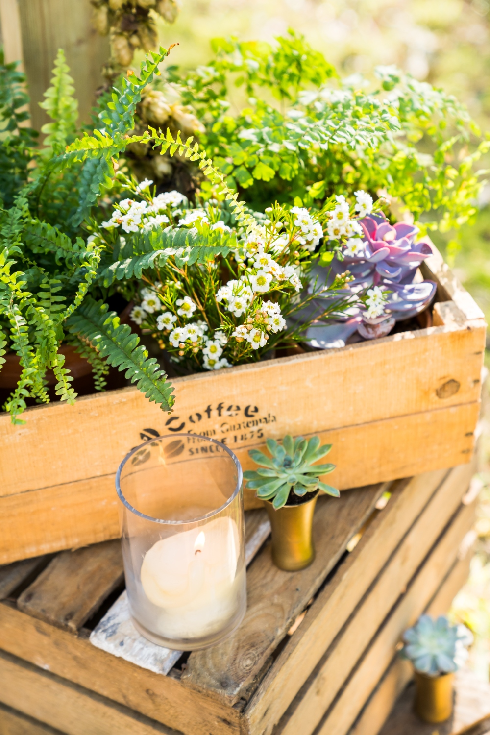 fern plants stacked wooden crates wedding ceremony woodland wedding dorset wedding wedding florist