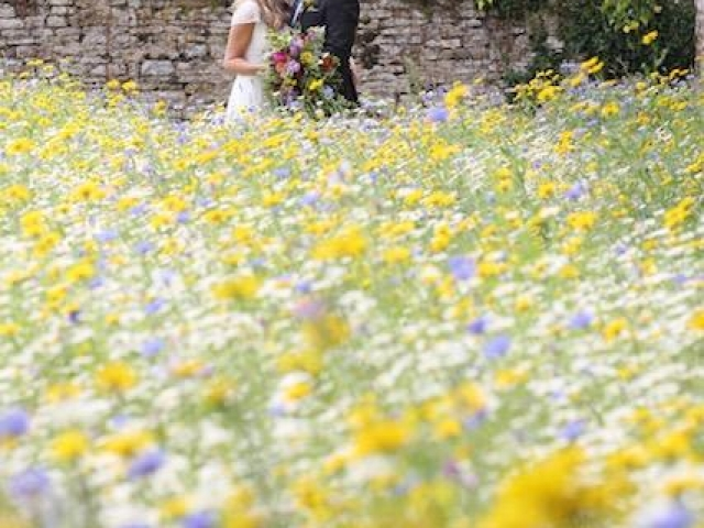 Bride and groom, just got married, wedding photography, wedding flowers, smedmore house, dorset