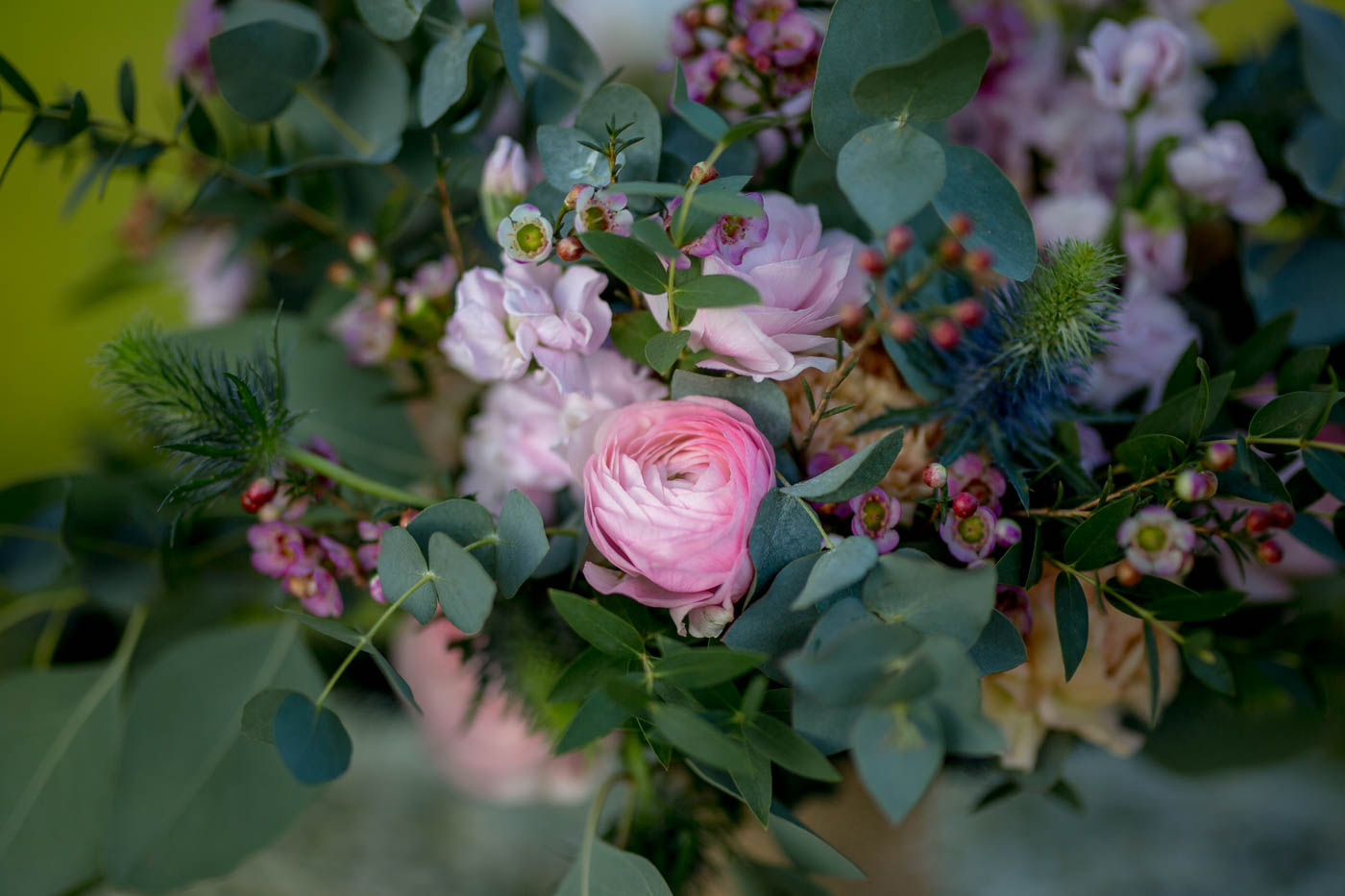 winter wedding bouquet pink ranunculus eryngium, thistle pink wax flower florist stocks dorset wedding sopley mill